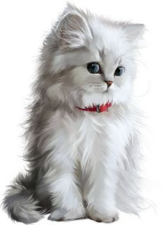 About the Persian Cat - Cat's Nine Lives Cute Animal Illustration, Cute Animal Drawings, Animal Sketches, Cute Cats And Kittens, I Love Cats, Kittens Cutest, Cute Baby Animals, Animals And Pets, Cat Wallpaper
