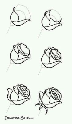 Sketch a rose