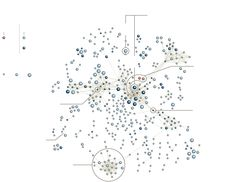 Drug Marketers Use Social Network Diagrams to Help Locate Influential Doctors - Graphic - NYTimes.com