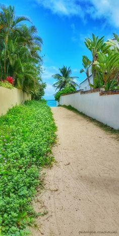 Path to Lanikai Beach, Hawaii, named one of the best beaches in the world by TripAdvisor