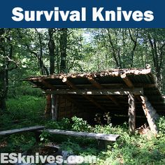 Survival knives are intended for survival purposes when lost in a wilderness environment. Here's a collection of some great survival knives for hunters, hikers, and other outdoor sport enthusiasts. Find more at http://www.extremely-sharp.com/survival-military-knives/