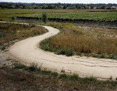 Sonoma County's largest freshwater marsh sports a 1.8-mile multiple-use trail and a mixture of wetlands, riparian forest, woodlands, grasslands, vernal pools and open water.