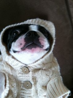 I TYPED IN COLD WEATHER OUTFITS AND THIS CAME UP OH MY I CAN'T