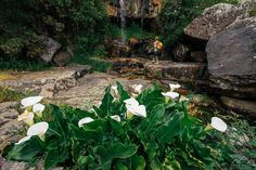 Trilho das Cascatas - Viagens à Solta Trekking, Places To Go, Nature, Plants, Pedestrian, Waterfalls, Drop, Walking, Railings