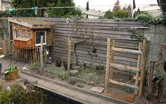 huis-tuin-en-keuken: C: Biologische kippen houden in de stad. Chicken Pen, Chickens Backyard, Coops, Hens, Blue Bird, Garden Inspiration, Home Improvement, Outdoor Structures, House Styles