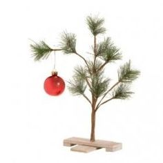 Charlie Brown Christmas tree. Ryan here is the perfect tree for your apartment. We have lots of pine limbs.