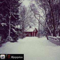 Katso Instagram-kuva käyttäjältä @muistojennikkila • 16 tykkäystä