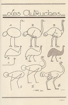 how to draw ostriches
