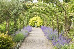 Walkway in the Walled Gardens July 2013