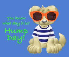Happy Hump Day Sell On Amazon, Childrens Books, Education, Happy, Kids, Children's Books, Young Children, Boys, Children Books