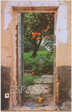We have two Spanish tourist posters in our entry sala. This one is of   Bonitas naranjas de la huerta........that's what our garden entry looked like a few years ago....