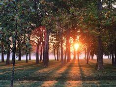 #milano #parco #parcoditrenno #seidelmattino #alba