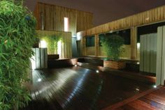Bamboo planters on roof terrace