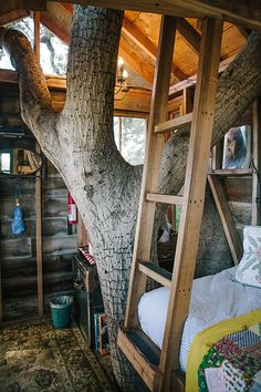 San Francisco Treehouse. A treehouse build 7.6 meters up in an 125-year-old coast live oak. Recycled, reclaimed and vintage materials have been used in the making. The whole construction has been put up in the tree without using any bolts or nails; therefore, not damaging the tree. The treehouse is truly magical because of its rustic interior and small details reminding of childhood. Located in Burlingame, San Francisco Bay, CA.