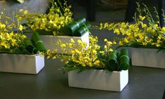 Modern Table Florals – Yellow Simple arrangement of oncidium orchids and tropical greenery. Hotel Flower Arrangements, Contemporary Flower Arrangements, Christmas Flower Arrangements, Estilo Floral, Arte Floral, Corporative Events, Hotel Flowers, Orchid Centerpieces, Corporate Flowers