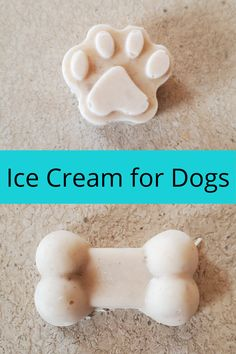 3 ingredient ice cream for dogs is an easy treat to give your dog on a hot day. 3 Ingredient Ice Cream, Greek Yogurt And Peanut Butter, Dog Ice Cream, Frozen Dog Treats, Peanut Butter Dog Treats, Chocolate Ice Cream, Dog Treat Recipes, Bakeries, Frozen Banana