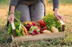 Cuáles son los vegetales que si cultivas, podrás ver crecer en poco tiempo y sin necesidad de convertirte en un experto en cuidados.