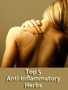 What Are Some Natural Anti Inflammatory Herbs?