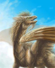 Western Dragons
