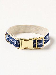Arrowhead Dog Collar in fp-pet-project