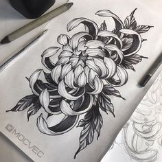 Chrysanth me - Crisantemo amour Tattoo Sketches, Tattoo Drawings, Body Art Tattoos, Life Tattoos, Japanese Flower Tattoo, Japanese Flowers, Japanese Sleeve Tattoos, Flower Tattoo Designs, Flower Tattoos
