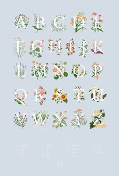 visualgraphc: An A-Z of Edible Flowers Charlotte Day