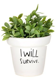 Mags - I WILL SURVIVE - Idée cadeau - blanc