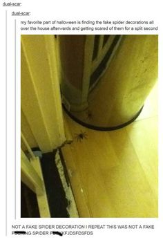 25 Hilarious Tumblr Photo Comments | SMOSH
