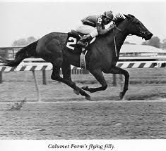 Davona Dale. Won the Filly Triple Crown in 1979, galloped her brother Right n Red