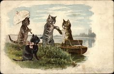 """Four Kitty Cats Details: Type: Divided Back Stamp: 1c Postmark/Cancel: 1905 Aug-18  Chicago, ILSize:3.5"""" x 5.5"""" (9 x 14 cm)"""