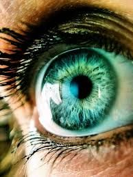 Image result for beautiful eye