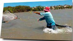 Video en el que se aprecia la pesca de camaron con atarraya,aparejo que es lanzado por pescadores con experiencia y también novatos que quieren aprender a tirar.También el uso del chinguillo https://www.youtube.com/watch?v=Sq97eohgAzY
