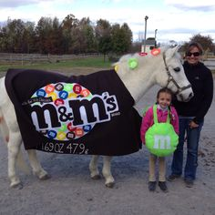 Pony and rider costume we made for last years Halloween show...what to be this year?!?
