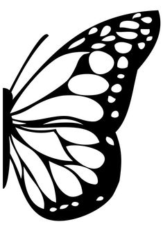Wall Decals Butterfly Wing Swirls Feathers Words Love Spirals Art Without Boundaries Butterfly Stencil, Butterfly Drawing, Butterfly Template, Butterfly Crafts, Butterfly Pattern, Monarch Butterfly, Butterfly Wings, Printable Butterfly, Butterfly Feeder