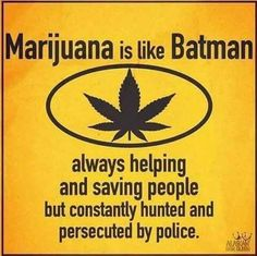 Buy top quality Cannabis Seeds from Seedsman. Our range of marijuana seeds is one of the largest online, with more than 3000 varieties of Cannabis Seeds. Stoner Quotes, Weed Humor, Funny Quotes, 420 Quotes, Witty Memes, 420 Memes, Stoner Humor, Stoner Girl, Book Lists