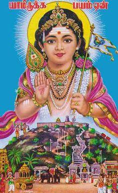 "Palani Murugan  (via Palani.org)   ""Yaam irukka bhayam eyn? Why fear when I am?"""