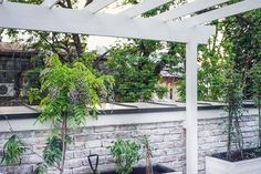 Terrace, Art Nouveau, Minimalism, Pergola, Outdoor Structures, Interior, Modern, Plants, Ideas