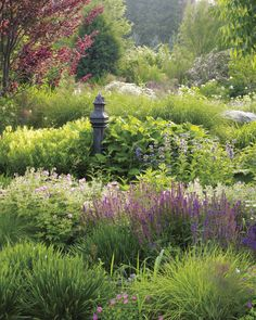 Perennials are largely favored for their ability to survive season after season, and year after year. Such proliferation eliminates the need for constant replanting. Within the perennial family, hostas, yarrow, peonies, daylilies, coneflower, and chrysanthemums are particularly simple to care for. When searching for undemanding plant strains, consider water requirements, soil requirements, and susceptibility to insects and disease.
