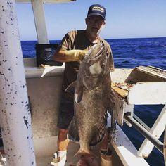 Captain Kenny Guindon holding a grouper. Seafood Online, Seafood Market, Fresh Seafood, Historical Sites