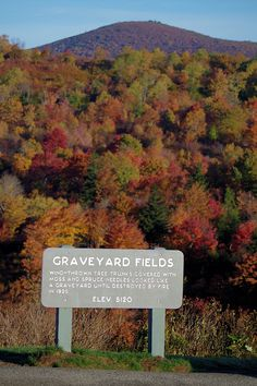 Graveyard Fields on the Blue Ridge Parkway in North Carolina with hiking and waterfalls