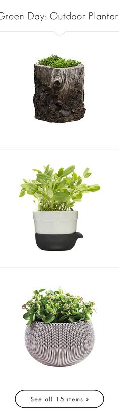 """""""Green Day: Outdoor Planters"""" by polyvore-editorial ❤ liked on Polyvore featuring outdoorplanters, home, outdoors, outdoor decor, plants, filler, flowers, garden, brown and outdoor"""