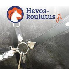 Amerikkalainen työvaljastus - ilmainen verkkokurssi hevosen valjastamisesta ja työvaljaista.
