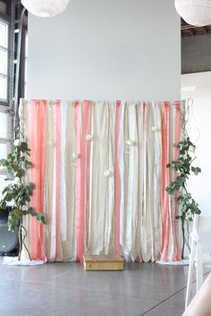 Pipe and drape backdrop.  We can customize this with different colors, etc, and would make a great backdrop for cake or photos.
