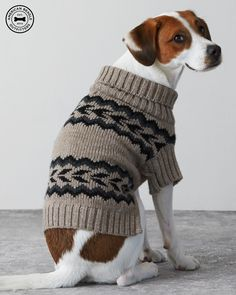 Heather Brown American Beagle Outfitters Patterned Sweater Poncho- i wish i had a cute dog! Beagle Tattoo, American Beagle, Beagle Dog, Cute Animal Pictures, Cute Sweaters, Dog Accessories, Animal Rescue, Fur Babies, Cute Dogs