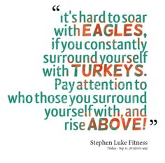 http://inspirably.com/uploads/user/2592-its-hard-to-soar-with-eagles-if-you-constantly-surround_380x280_width.png