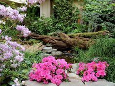 The Spring Prelude Garden   Weddings at The Butchart Gardens