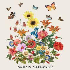 No Rain, No Flowers Wall Tapestry by cali_zinnia Wall Prints, Poster Prints, Canvas Prints, Art Print, Posters, Flower Canvas, Flower Art, Bedroom Wall Collage, No Rain No Flowers