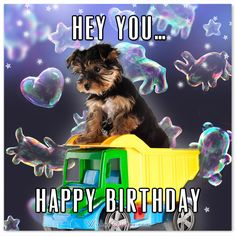 Happy Birthday Card: HEY YOU… HAPPY BIRTHDAY