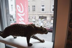 16 Photos From a September Weekend in Berlin Berlin, Photo Diary, Photo Journal, Berlin Germany
