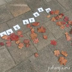 Thema Herfst voor groep 1 - 4(knijpkaarten, knutsels, spel) - juf Anja Outdoor Education, Outdoor Learning, 4 Kids, Art For Kids, Bee Creative, Creating A Business, Kindergarten, Brainstorm, Autumn